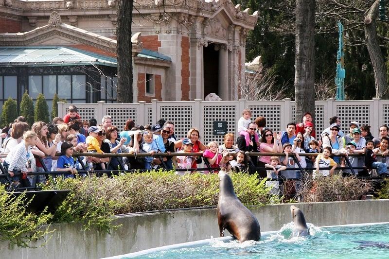 Bronx Zoo: Zoológico do Bronx em Nova York