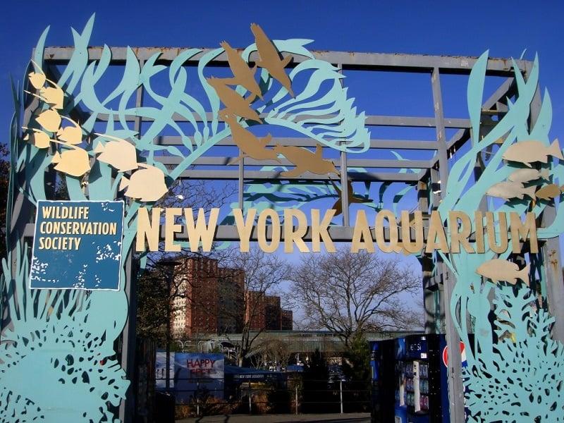 Aquário de Nova York