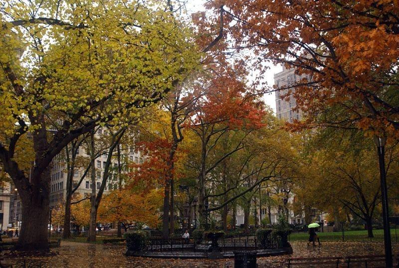 Madison Square Park Nova York