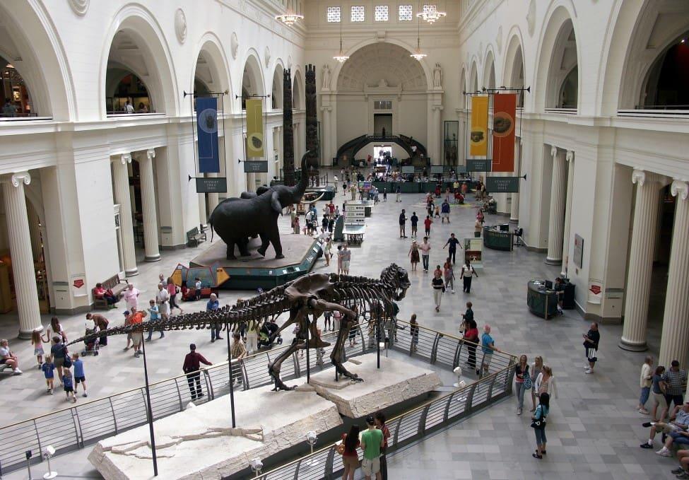 Field Museum em Chicago