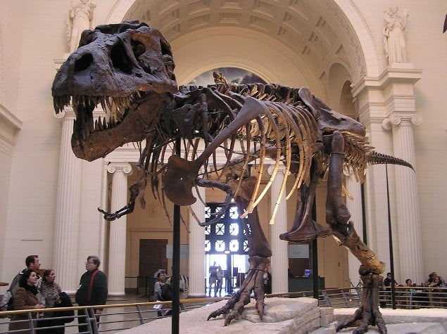 Field Museum of National History em Chicago
