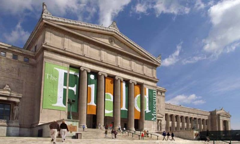 Field Museum of National History no outono em Chicago