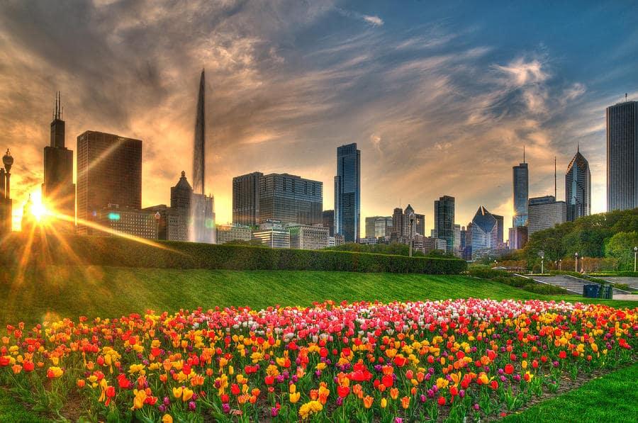 Primavera em Chicago