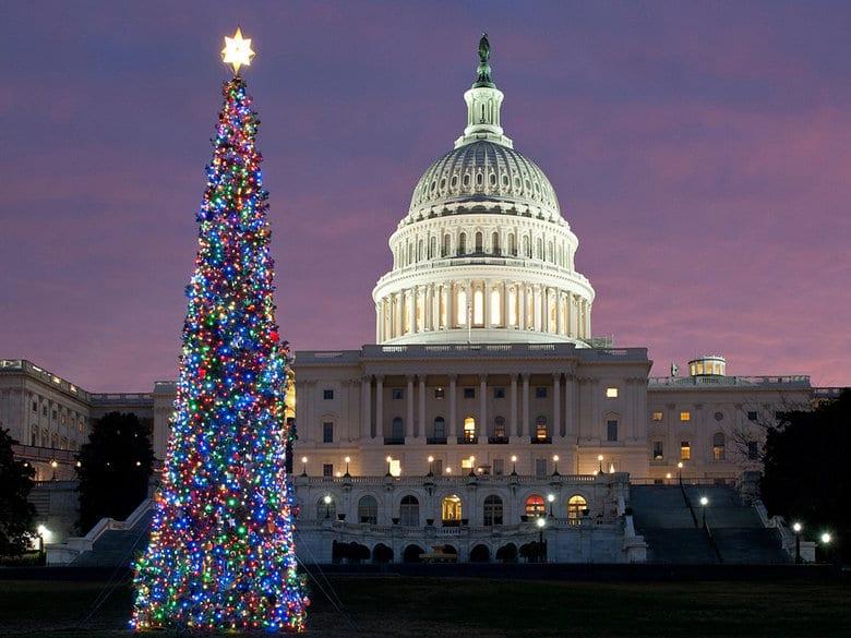 Ver as árvores de natal da Casa Branca e Capitólio
