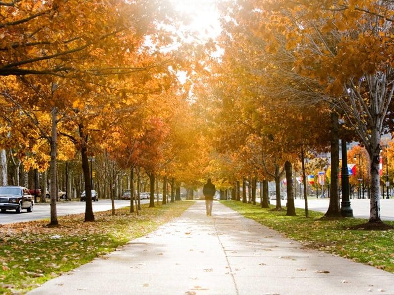Outono na Filadélfia