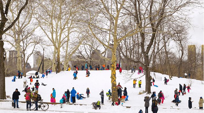 Central Park Nova York no Natal