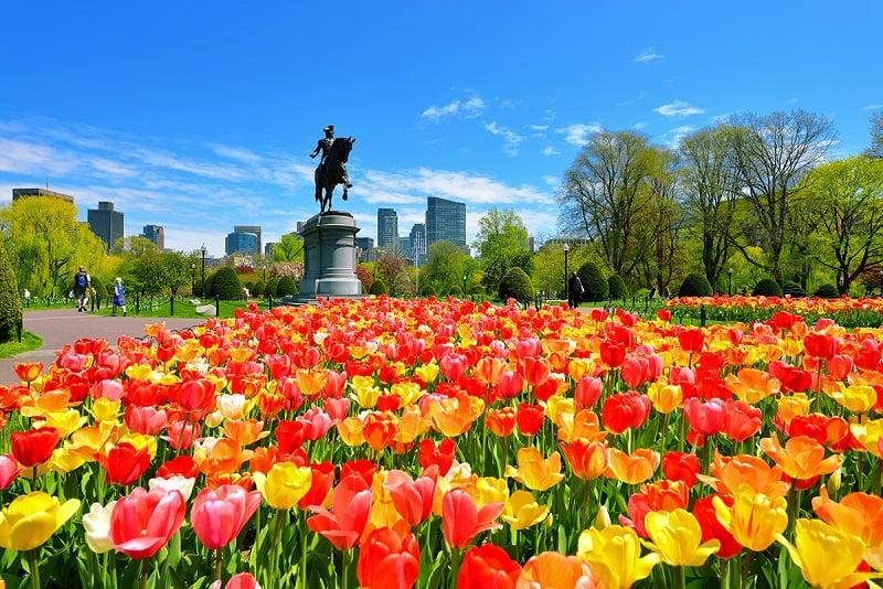 Lua de mel em Boston